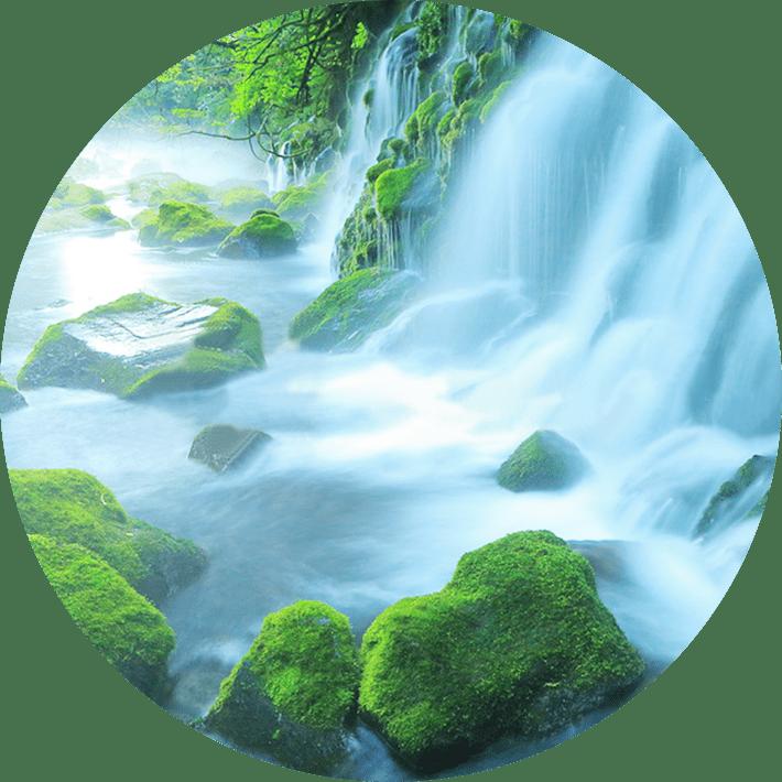 「おいしさ・安全・品質」はすべて採水地(水源)で決まります!